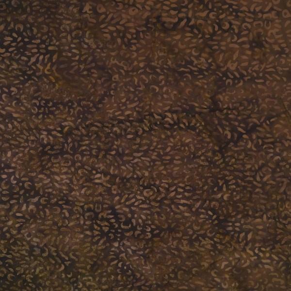 BM-28-6478 Clams