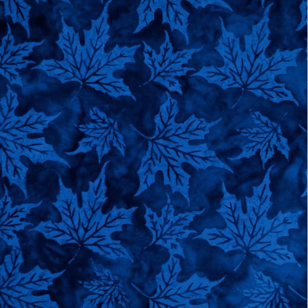 BN-6-9362 Blue Fame