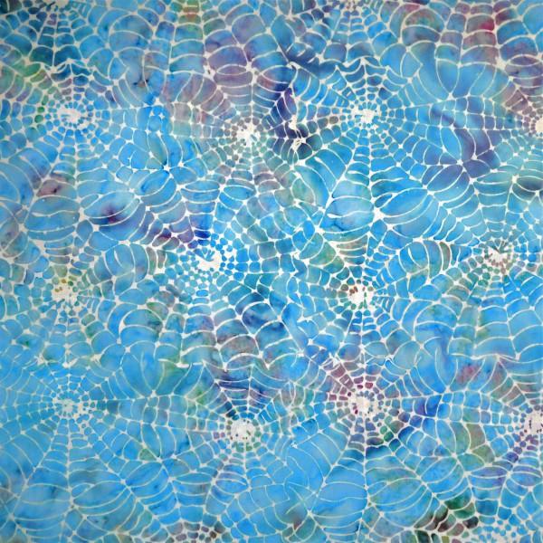 BW-7-9852 Aqua Delmar