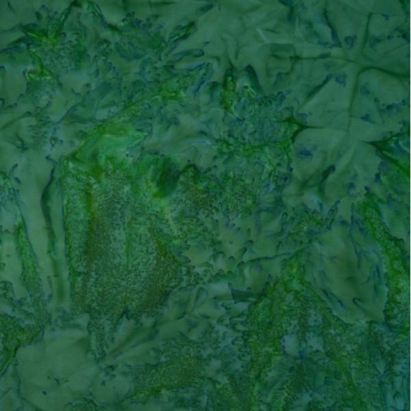 FU-10-9398 Grass Land