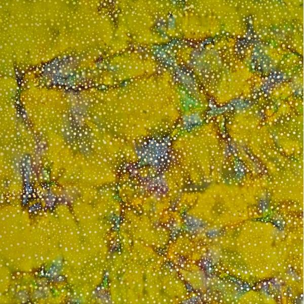 MO-7-6338 Golden Fusion