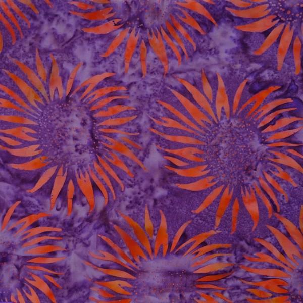 HN-4-5321-Purple-Reign