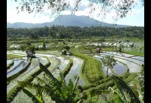 tirta-gangga-water-palace-bali-20